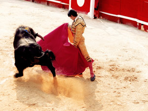 Spain removals image of Matador